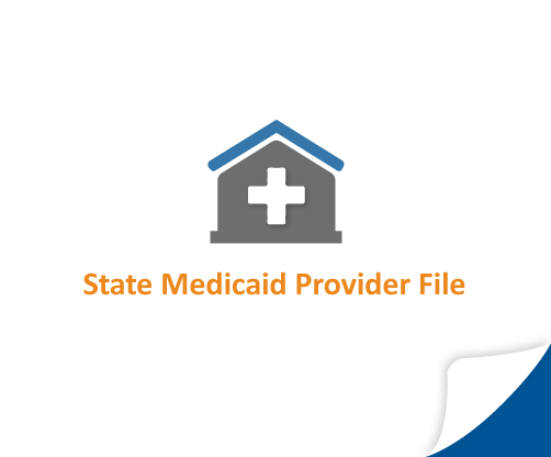 State Medicaid Provider File